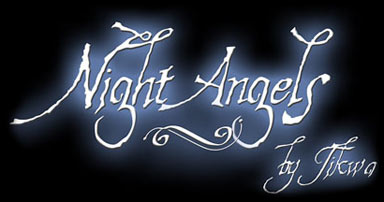 Night Angels Logo